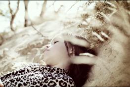 ©Dominic Rose